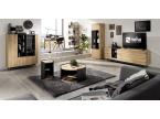 Salon moderne avec meuble TV bois et métal